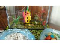 Fish tank 19l with filter castle and more