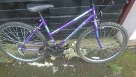 UNIVERSAL LADIES MOUNTAIN BIKE, 18 INCH FRAME, 26 INCH WHEEL'S, 18 GEARS, GOOD CONDITION