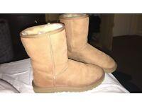 Womens Classic Short II Ugg Boots - Size 5.5