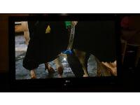50' LG 50pg3000 full hd plasma tv TV build in freeview tuner