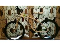 Chris Boardman mountain bike