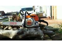 Stihl ms181 chainsaw