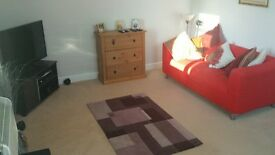 Harrogate- Leeds Road - one bedroom immaculate flat to rent