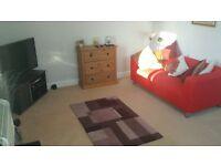 Harrogate- Leeds Road - one bedroom immaculate flat to rent