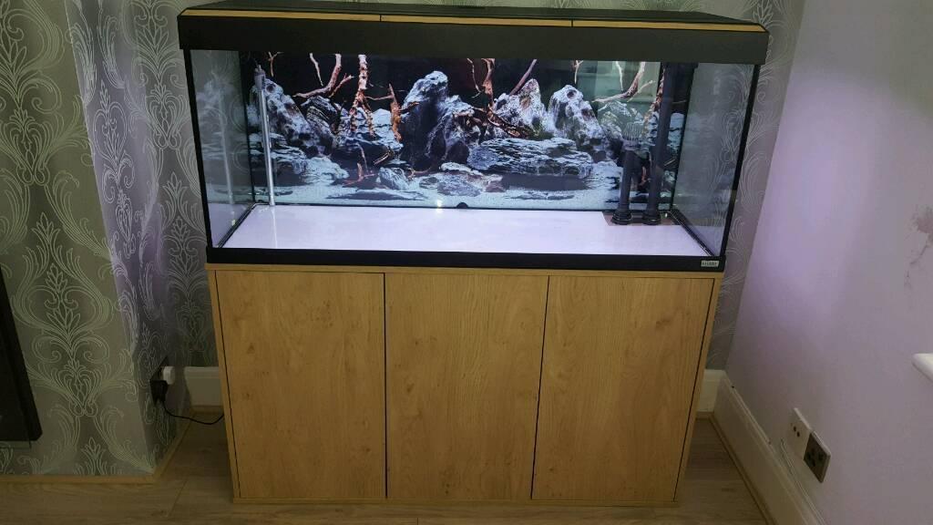 fluval roma 240 aquarium in lancing west sussex gumtree. Black Bedroom Furniture Sets. Home Design Ideas