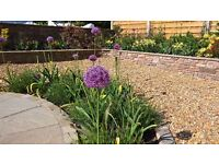 Self Employed Landscape Gardener/ Labourer required for small landscaping firm in Bristol (Redland).