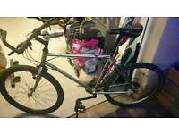Gents large Raleigh mountain bike