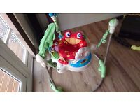 Fisher-Price Rainforest Jumperoo.