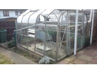 Greenhouse free to good homee.