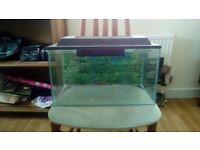 Basic Aquarium