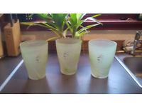 GLASS ORCHID POTS