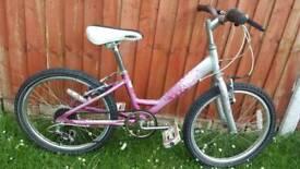Girls Mountain Bike in Good Condition
