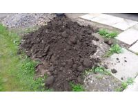 Tons of Free Soil - next to road - easy loading