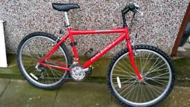 Raleigh firefly 18inch frame