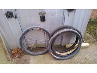SPECIALIZED QUICK RELEASEASE 26in FRONT WHEEL