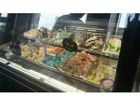 Very succesful ice cream parlour for sale..all stock and fridges included