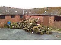 Mixed wood logs job lot