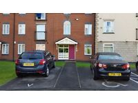 1 Bedroom in 2 bed flat Manchester £280