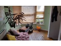 2 Bedroom Flat with Garden in Central Brighton Private Let Available End August