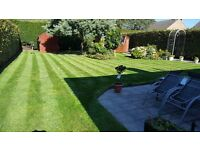 Garden Services - Grass Cutting from only £17.50!
