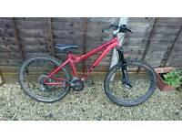 specialized p all mountain bike 2007