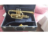 King cornet