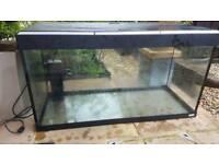 Roma fish tank