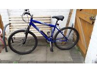Mens Falcon Mountain Bike