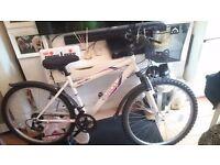 Apollo Elusion Mountain Bike with basket and mirror