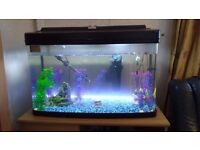 Tropical Fish Tank including all accessories