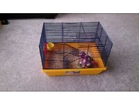 Small Hamster cage. Great condition. As shown.
