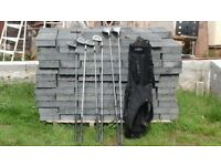 6 golf clubs in black caddy ba