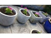 Garden pots for sale