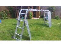 Ally multipurpose ladder