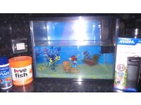 19L Fish tank and accessories