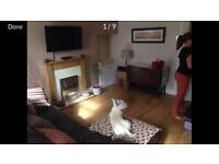 2 Bed Terraced Unfurnished Cottage For Rent in Morriston, Swansea