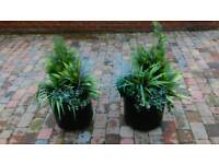 Realistic look plastic tree shrub plants