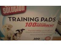 Puppy training pads box 99