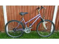 Adult Front Suspension Mountain Bike in Good Condition