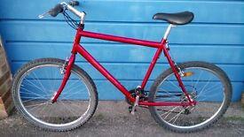 "Men's Raleigh Road/Mountain Bike Large Frame 22"" + Helmet and Lock"