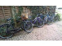 job lot bikes 4x bikes hero raleigh claiud butler