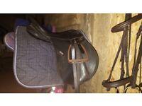 "17"" wintec saddle for sale"