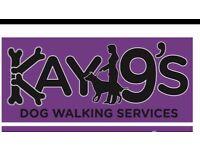 Kay9's Dog Walking Services