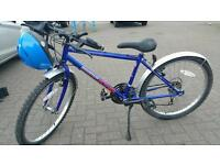 Teenage townsend MOUNTAIN KING mountain bike for sale ..