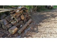 free logs and wood to collect