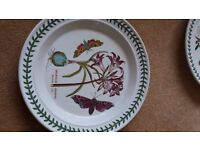 dinner plate Portmeirion Mexican Lily