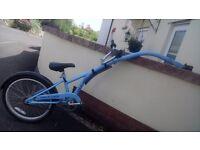 Tag-a-long bike