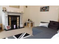 1 Double bedroom period apartment with private garden minutes from Oval underground station
