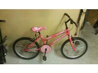 Girls pink bike