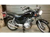 Yamaha ybr 125cc custom